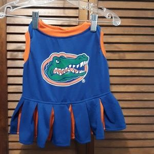 Go Gators cheerleader outfit for your Posh pet!